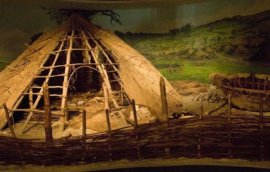 Первые жилища человека