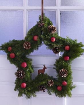 Звезду из елочных веток можно повесить и на окно и на дверь