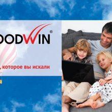 Оконный ПВХ профиль Гудвин (Goodwin)